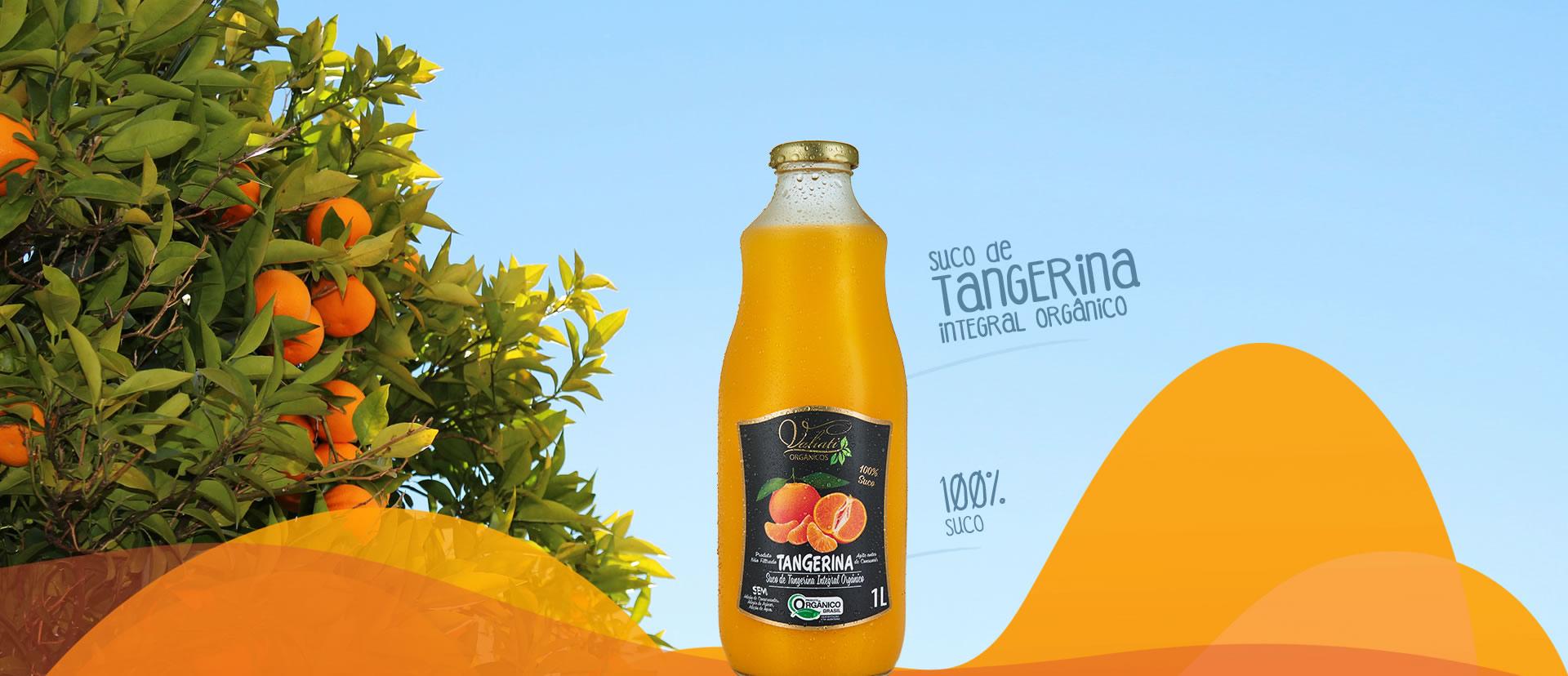 Banner 2 tangerina
